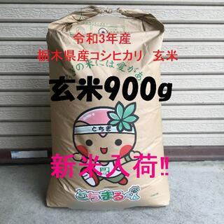 新米入荷!令和3年産 栃木県産コシヒカリ 玄米900g お試しに最適♪