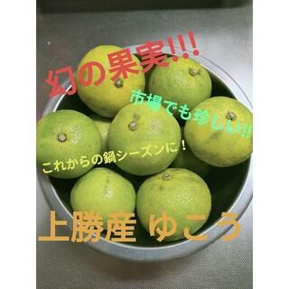 幻の果実!!! 上勝産ゆこう 12個