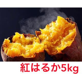 紅はるか5キロ(鹿児島県産)即購入ok(野菜)