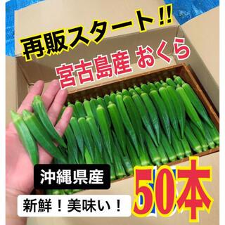 【50本】宮古島産 おくら オクラ