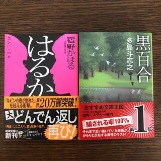 2冊セット★ はるか 宿野かほる 黒百合 多島斗志之(文学/小説)
