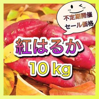 さつまいも『紅はるか』10kg (野菜)