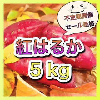 さつまいも『紅はるか』5kg(野菜)