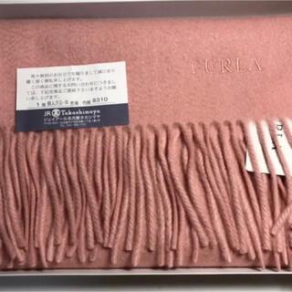 フルラ(Furla)のFURLA カシミヤ100%ストール 新品未使用(マフラー/ショール)