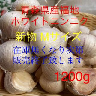 新物 青森県産福地ホワイトニンニクMサイズ1200g (野菜)