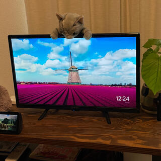 山善 - Qriom 24V型ハイビジョン液晶テレビ