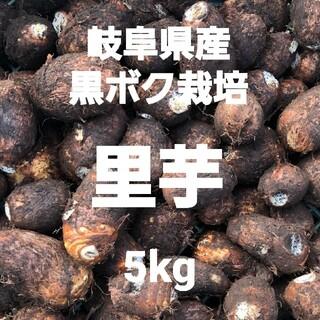 02 岐阜県産 無農薬 ねっとり 里芋 5kg 土付き 堀り立て発送!(野菜)
