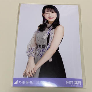 ノギザカフォーティーシックス(乃木坂46)の乃木坂46生写真向井葉月(アイドルグッズ)