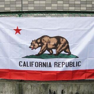 カリフォルニアリパブリックのアメリカン フラッグ タペストリー 国旗 州旗