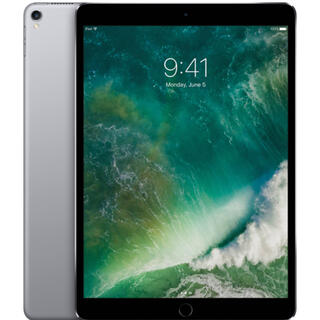 Apple - 美品 iPad Pro10.5インチ 256GB wifiモデル