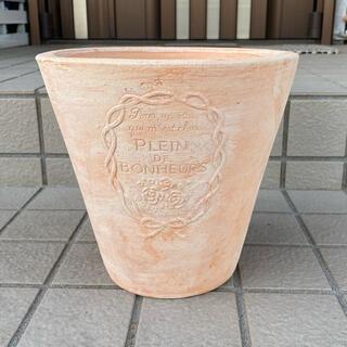 新品 テラコッタ鉢 素焼き鉢 植木鉢