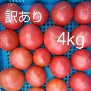 訳あり 大玉トマト 4キロ