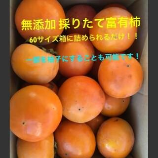 無農薬!富有柿 箱いっぱい!柚子もOK!