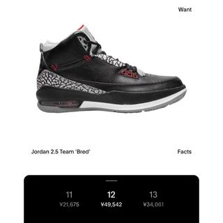 NIKE - 新品 Air Jordan 2.5 Team Black NIKE ジョーダン