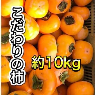 和歌山県産。ヒラタネ柿。ご家庭用約10キロです。