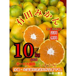 和歌山県産 数量限定 有田 みかん 家庭用 セール10kg早い者勝ち