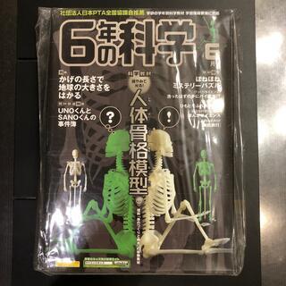ガッケン(学研)の学研の学年別科学教材 6年の科学(6月号) 人体骨格模型(絵本/児童書)