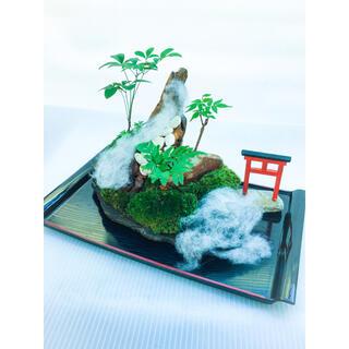 苔盆栽(苔島シマラヤ山脈の雪景色)(その他)