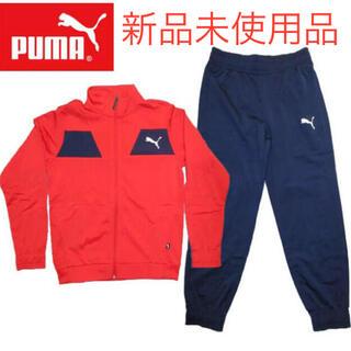プーマ(PUMA)のタイムセール【新品・未使用品】PUMAキッズポリスーツ150cm(その他)