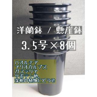 ◎8個◎ 深鉢 3.5号 3.5寸 懸崖鉢 洋蘭鉢 プラ鉢 長鉢 ハオルチア