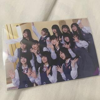 乃木坂46 - 大園桃子 卒業記念写真