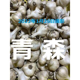 青森県産にんにく20kg L ニンニク20キロ 福地ホワイト6片種 訳あり①(野菜)
