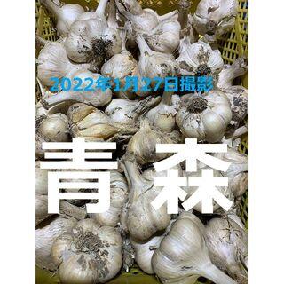 青森県産にんにく20kg 2L ニンニク20キロ 福地ホワイト6片種 訳あり①(野菜)