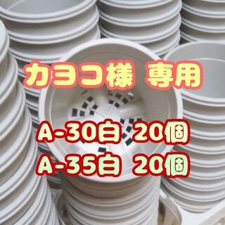 プラ鉢3号鉢【A-30】20個 スリット鉢 丸 プレステラ 多肉植物(プランター)