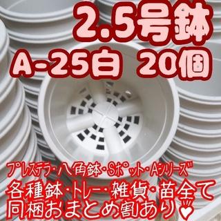 プラ鉢2.5号鉢【A-25】20個 スリット鉢 丸 プレステラ 多肉植物(プランター)
