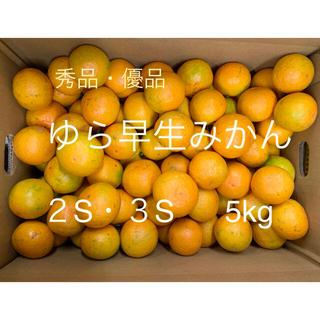 有田みかん ゆら早生 小さめ5キロ