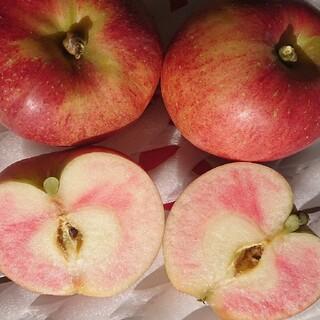 新品種、5箱のみ!果肉の赤いりんご(なかの真紅)家庭用2キロ