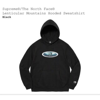 Supreme - Lenticular Mountains Hooded Sweatshirt