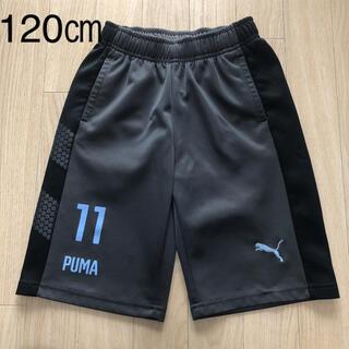PUMA - PUMA  パンツ 120