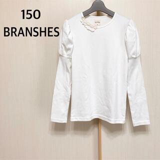 Branshes - 150   BRANSHES   長袖 カットソー