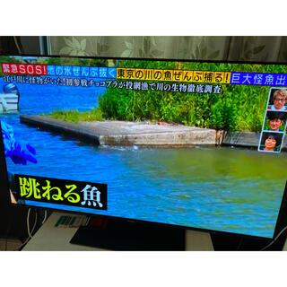 Panasonic - panasonic 有機ELテレビ 55インチ