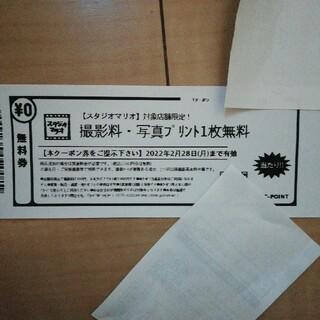 キタムラ(Kitamura)のスタジオマリオ 撮影料 写真プリント1枚無料引換券(その他)