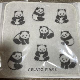 gelato pique - ジェラピケ パンダ ハンドタオル 新品