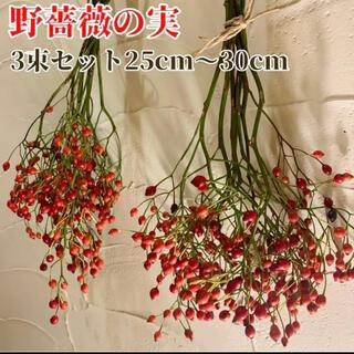 【長め3束.満杯】野薔薇の実 スワッグ 素材 インテリア 野ばらの実 (ドライフラワー)
