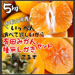 和歌山県産 種無し柿 有田みかん 箱込み5kg