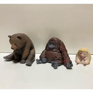 BANDAI - ひまなの寝 クマ オラウータン ハリネズミ