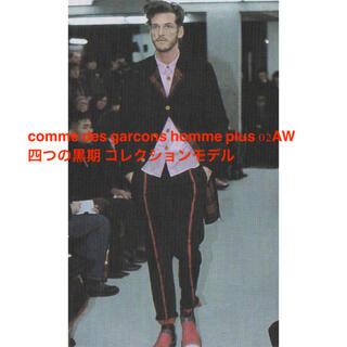 コムデギャルソンオムプリュス(COMME des GARCONS HOMME PLUS)の希少 comme des garcons homme plus AD2002(スラックス)