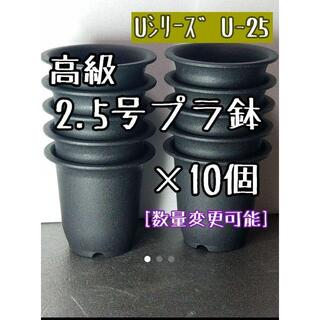 【U25】◎10個◎ 高級 プラ鉢 2.5号 U-25 硬質 丸鉢 ミニ鉢(プランター)