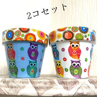 2.5号鉢 2個セット リメイク鉢 リメ鉢 フクロウ柄