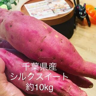 千葉県産 シルクスイート 約10kg