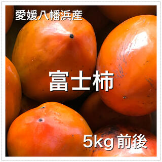 502 愛媛県産 富士柿 5kg前後 訳あり 八幡浜 柿