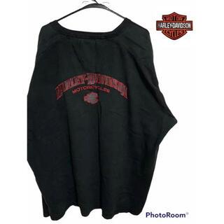 ハーレーダビッドソン(Harley Davidson)のハーレーダービッドソン 厚手 Tシャツ ビッグロゴ 刺繍(Tシャツ/カットソー(七分/長袖))