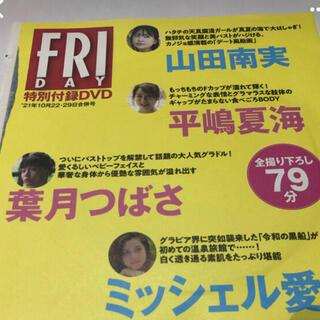 フライデー DVD