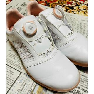 adidas - ゴルフシューズ レディース