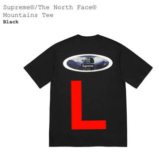 Supreme - 黒L Supreme The North Face Mountains Tee