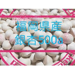 【大粒】純天然 無農薬 無漂白 銀杏500g(野菜)